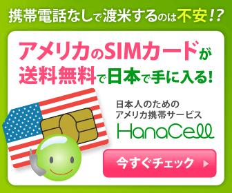 アメリカのSIMカードが送料無料で日本で手に入る