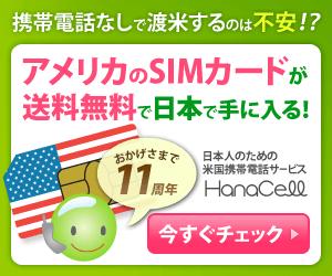 アメリカのSIMカードが日本で手に入る